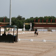 22_7_selection dressage camille3